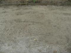 Enherbement surfaces sablées Déterminants composition couvert