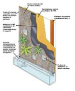 Murs végétalisés Coûts dentretien