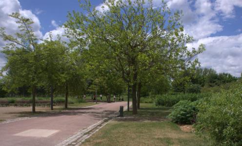 """Parc de Gerland à Lyon (69), labellisé EcoJardin depuis 2012 dans la catégorie """"Parcs et squares"""""""