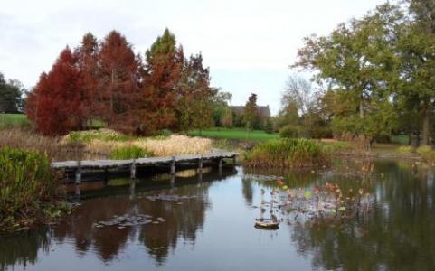 """Parc du Grand Blottereau à Nantes (44), labellisé EcoJardin depuis 2012 dans la catégorie """"Parcs et squares"""""""