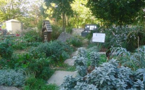 """Jardin partagé """"Le verger Essen"""