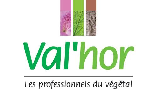 Valhor